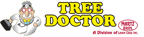 Tree Doctor Logo