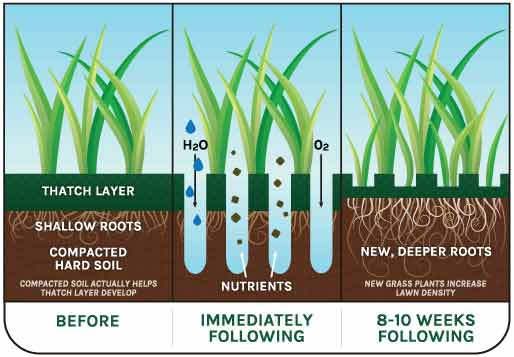 Lawn-Aeration-Benefits-by-Martz-Bros-Lawn-Care