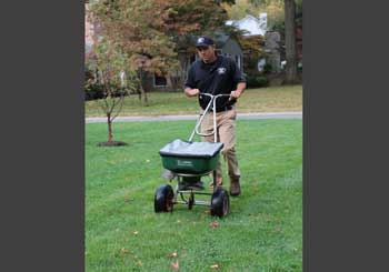 Martz-Bros-Dormant-Seeding-Lawn