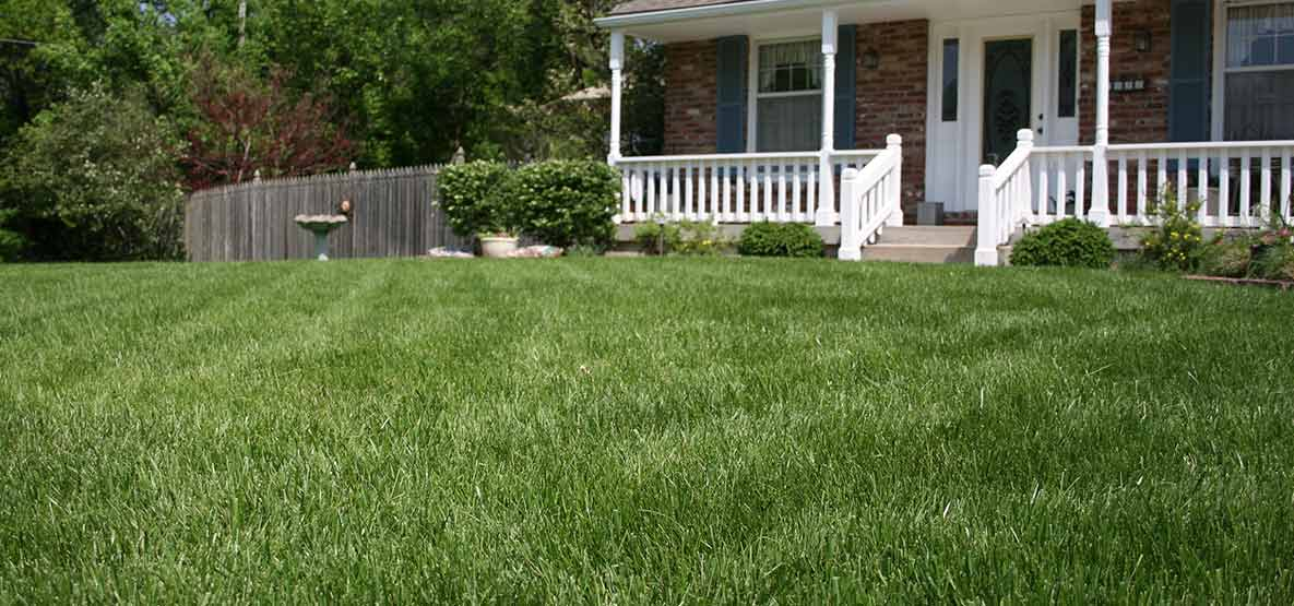 Kansas-City-Lawn-by-Martz-Bros-Lawn-and-Tree-Care
