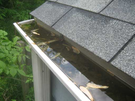 Gutter-that-needs-to-be-cleaned-out