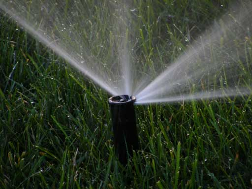 Sprinkler-Head-Watering